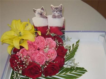 Cách cắm hoa hồng đơn giản nhưng đẹp mắt